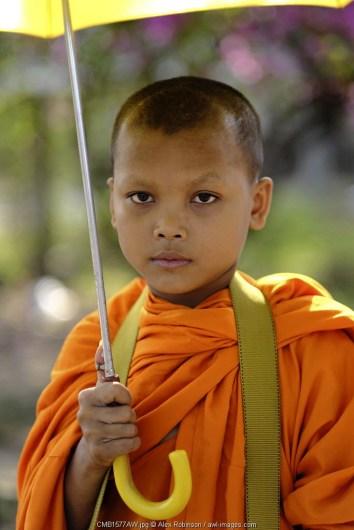 Asia, South East Asia, Cambodia, boy monk in saffron robes