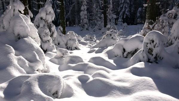 Een flink pakket sneeuw in de Ardennen. De foto werd gemaakt door AWM collega Wouter.