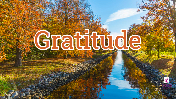Shift Your Focus with Gratitude