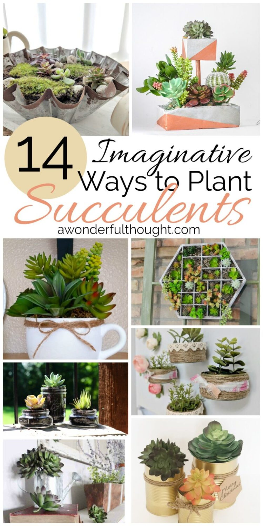 Imaginative Ways To Plant Succulents #Succulents #Succulentplanters #Succulentdecor #Awonderfulthought