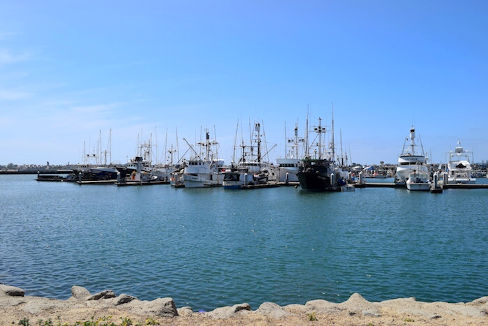 Things to Do in San Diego_Harbor