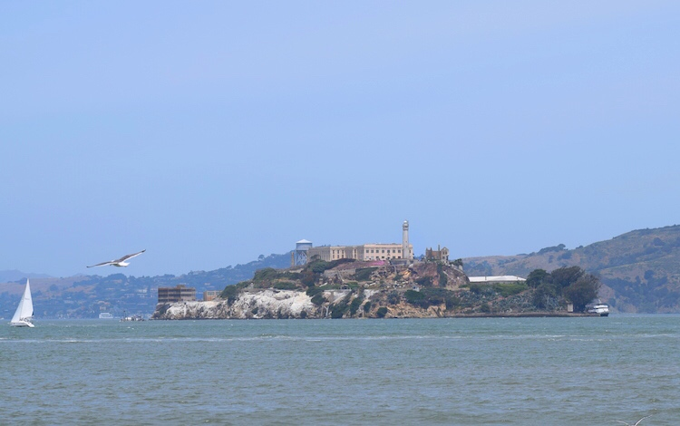 Things to Do in San Francisco_Alcatraz