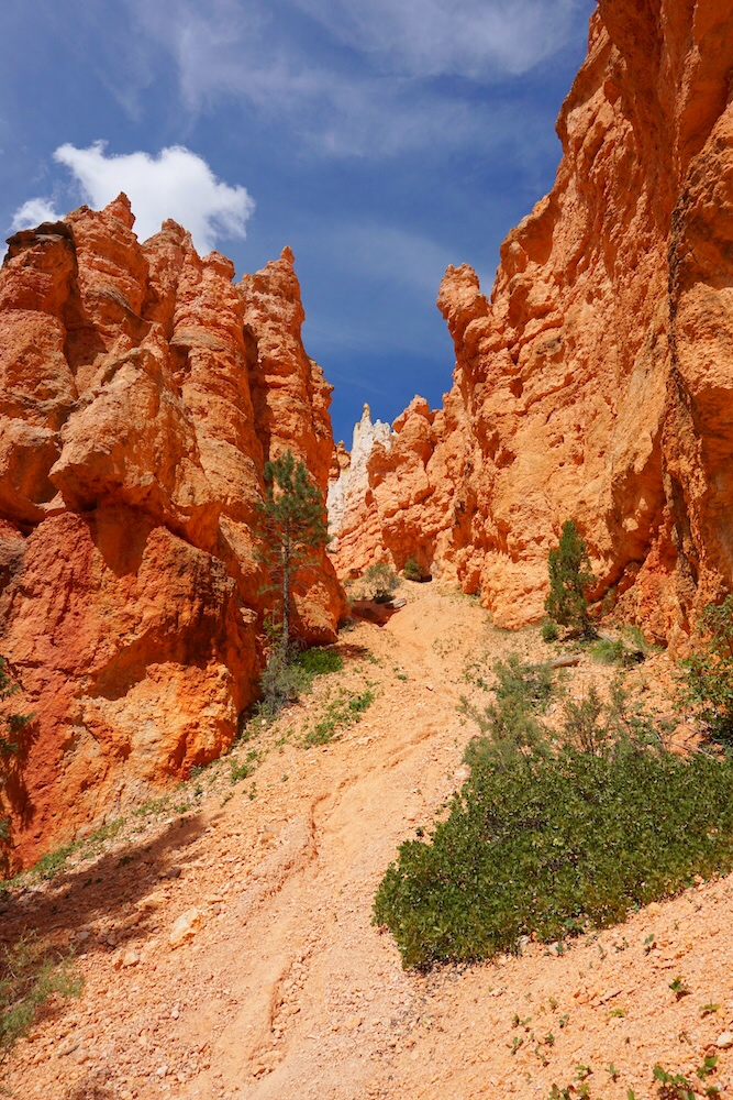 Bryce Canyon Photo Diary_Tips_1
