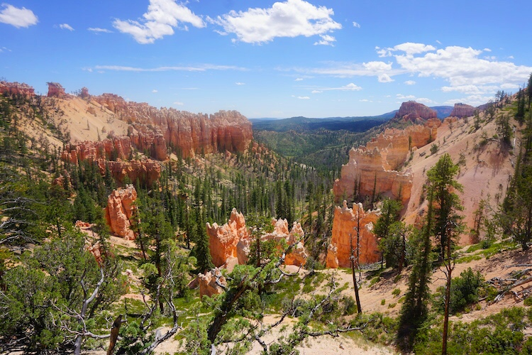 Bryce Canyon Photo Diary_Tips_11