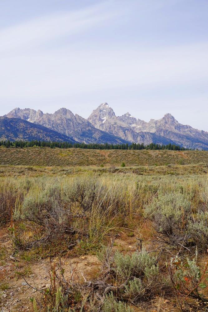 Yellowstone National Park Photo Diary 20