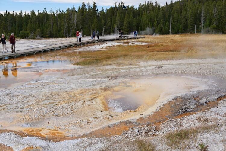 Yellowstone National Park Photo Diary 4