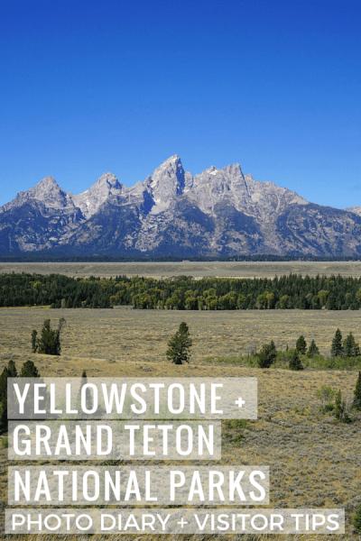 Yellowstone National Park Pinterest Image
