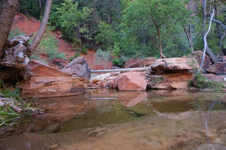 Zion National Park_Photo Diary 10