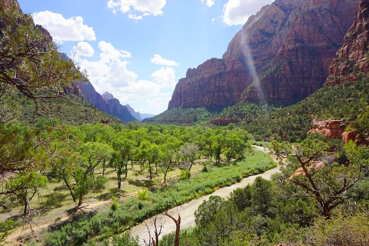 Zion National Park_Photo Diary 17