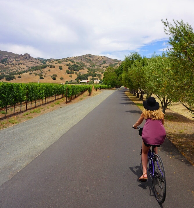 Guide to Wine Tasting in Napa Valley Wine Country_6