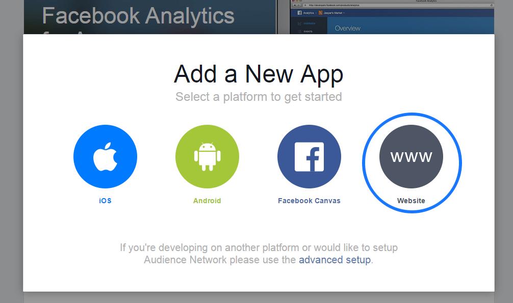 Select Website Option