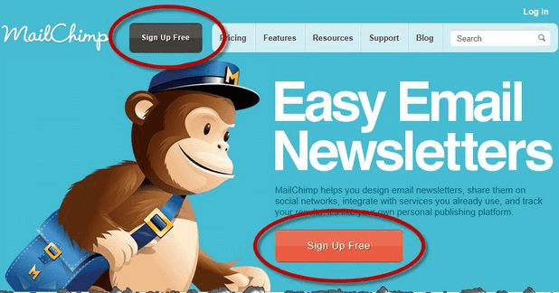 MailChimp Email Newsletters - A WP Life