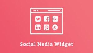 Social Media Widget WordPress Plugin