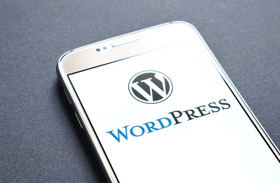WordPress is low cost to implementation CMS platform