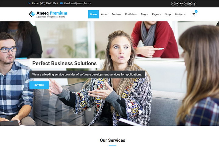 Aneeq Premium WordPress Theme
