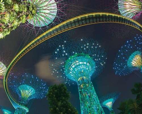 Passpod, Gardens by the bay, Itinerary Singapura