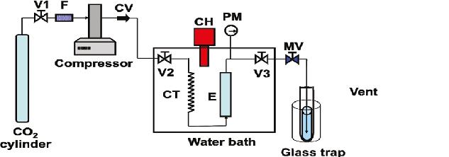 Algae Biofuels Research Method