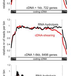 gene v dna v rna diagram [ 1011 x 1947 Pixel ]
