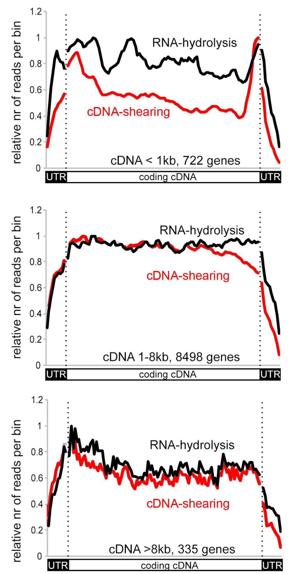 medium resolution of gene v dna v rna diagram