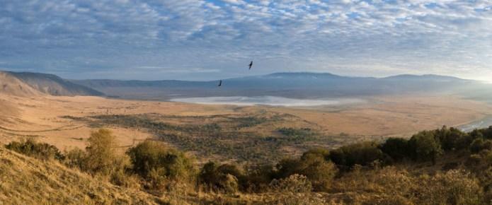 Ngorongoro, el cráter en el que nació la vida (salvaje)