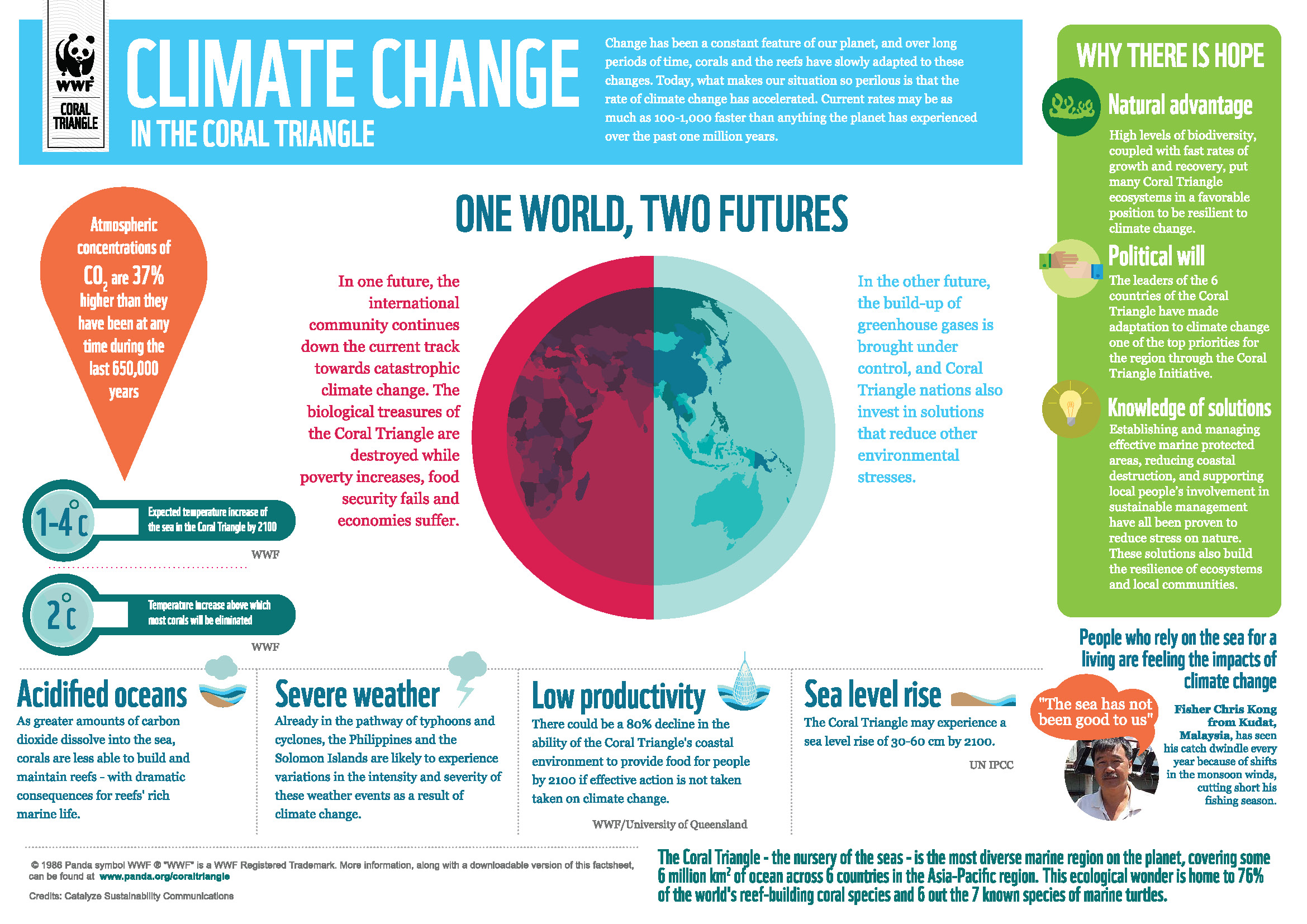 WWF INFOGRAPHIC Climate Change In The Coral Triangle