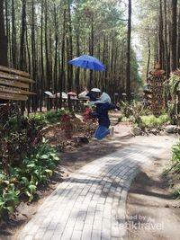 Hutan Pinus Malang : hutan, pinus, malang, Wisata, Hutan, Pinus, Semeru, Malang, Kekinian