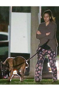 Polosan Muka Anjing : polosan, anjing, Foto:, Seleb, Cantik, Berani, Tampil, Polos, Halaman