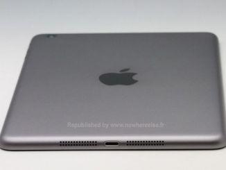 iPad Mini 2 Gray