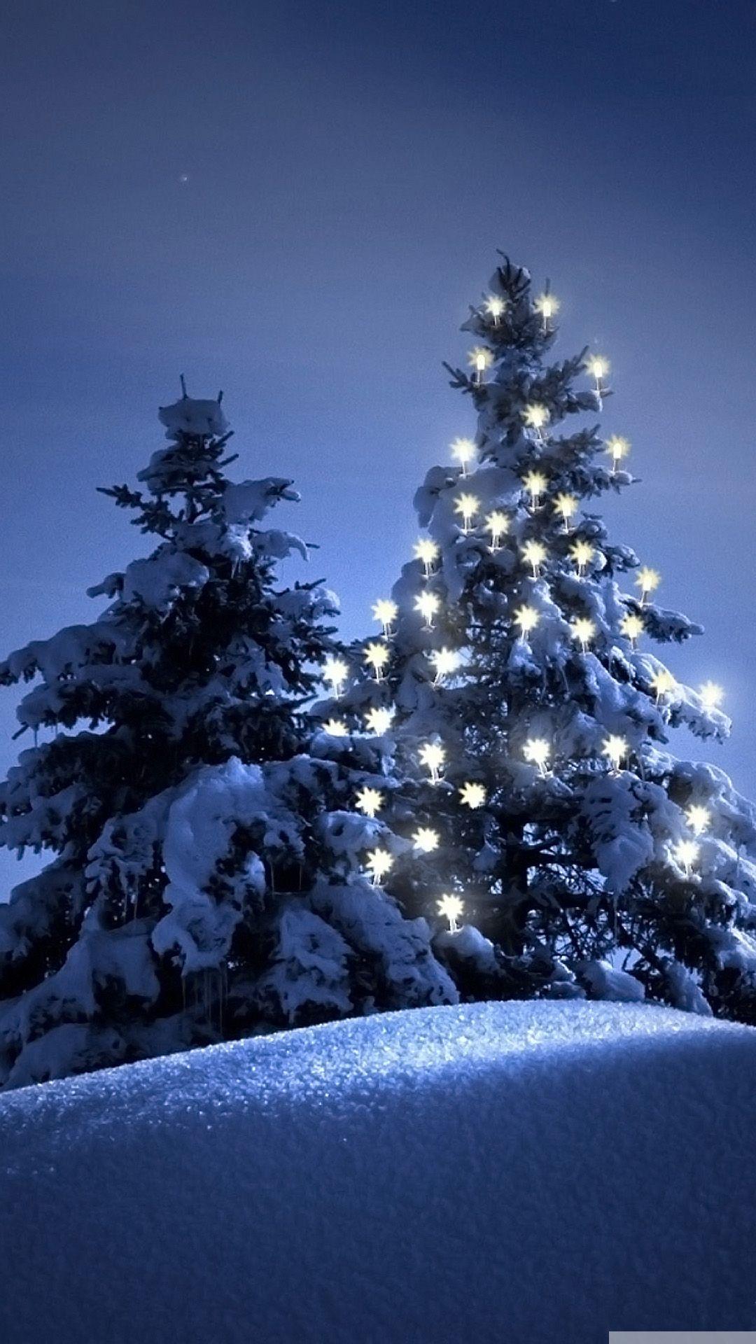 Snow-christmas-tree-winter-iPhone-6-wallpaper