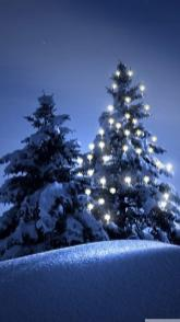 Snow-christmas-tree-winter-iPhone-6-wallpaper