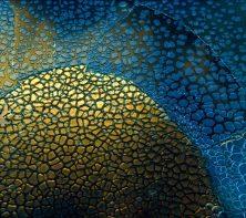 google-pixel-wallpaper-007-1068x949