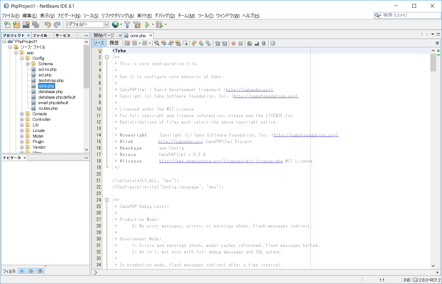 netbeans_project4
