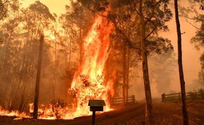 Australia Fires Blazes Too Big To Put Out World News