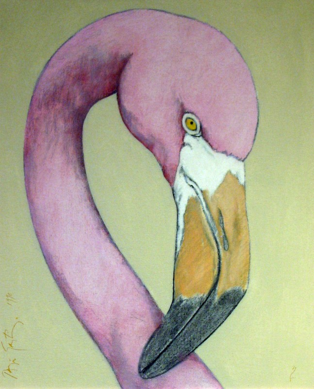 Flamingo, 1990, oil on canvas, 24 x 18.24 inches