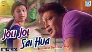 Joli Joli Sai Hua lyrics