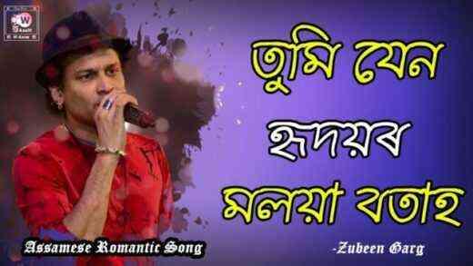 Tumi Jen Hridoyor Moloya Botah Lyrics