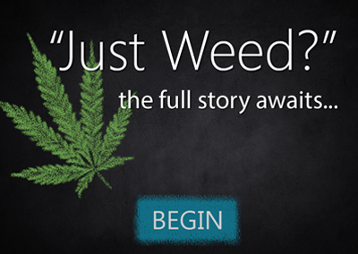 """Just Weed"" Educational Tool"