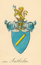 Von Axthelm coat of arms color - watercolor, Dobrà Voda, around 1860
