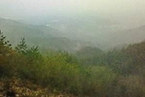 焼山寺山(938m)登山ちう