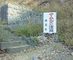 2008/10/04 14:50