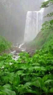 2011/ 6/23 8:34 賀老の滝なう!