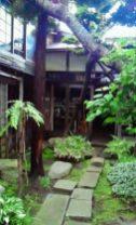 2011/ 6/24 13:39 横山家の庭