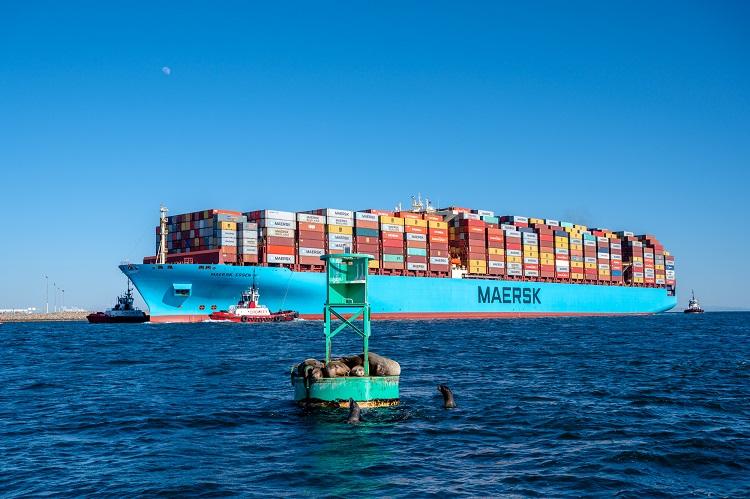 COVAXX y Maersk se asocian para suministrar vacunas COVID- 19 a nivel mundial