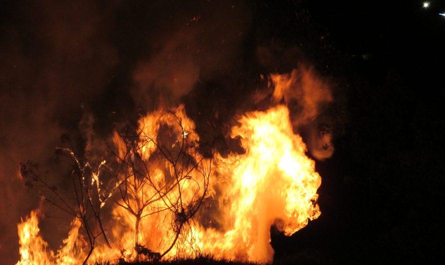 Abre Soriana centros de acopio de apoyo a brigadistas que combaten incendios