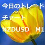 「海外口座の出金方法」今日のトレードチャート NZDUSD 2/9