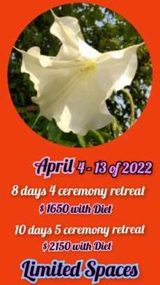 April 4-13 of 2022