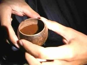 Ayahuasca Brew