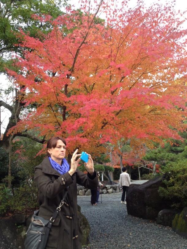 北半球の紅葉だわーと、感激していたキラ