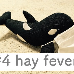 #4 hay fever