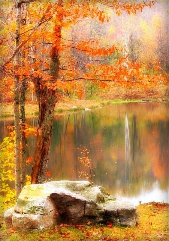 Smoky Mountains Fall Wallpaper Paysage Page 4